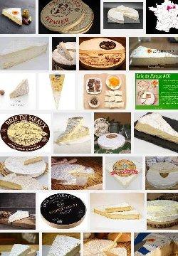 Brie de Meaux (aoc-aop)